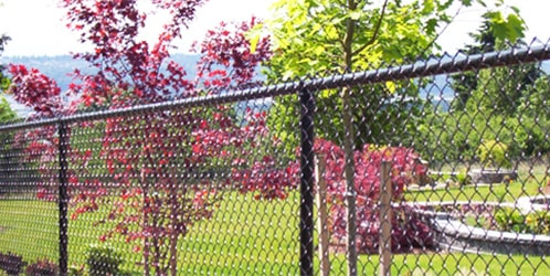 Chain Link Fencing in Seattle, WA